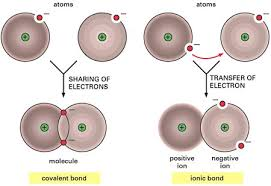 Atoms Bonding And The Periodic Table Exploring Chemical Bonding Sep Lessons