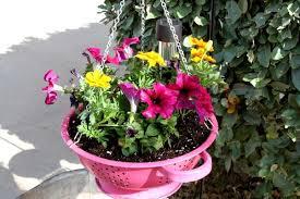 Garden Supplies How To Use Kitchen Items As Garden Supplies