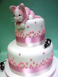 Interesting Design Cat Birthday Cakes Clever Best 25 Ideas