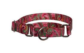 top 5 martingale collars for dogs ebay