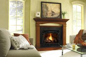 Fireplaces In Homes - house of fireplaces in elgin il coupons to saveon home