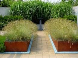 34 best courtyard planters images on garden plants