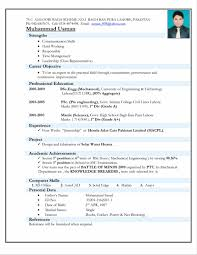 Resume Sample Summary by Example Of A Written Resume Sample Resume123
