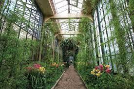 indoor garden lights home depot indoor garden amazing of botanical gardens lights home depot