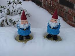 51 best gnome on the range images range gnomes and