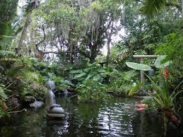 Botanical Gardens Sarasota Fl Serene Pond Picture Of Selby Botanical Gardens Sarasota