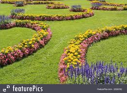 nature landscapes ornamental garden stock image i3339100 at