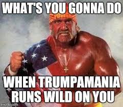 What You Gonna Do Meme - hulk hogan memes imgflip