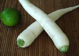 cuisiner radis blanc provence silvacane le panier de légumes radis japonais daïkon