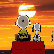peanuts summer sunset snoopy sunset