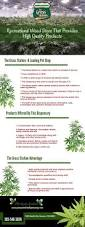 best 25 weed store ideas on pinterest pipes weed smoking pipes