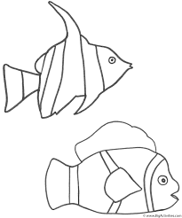 angel fish and clown fish coloring page fish