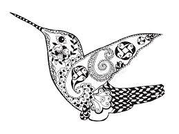 zentangle stylized hummingbird sketch for tattoo or t shirt
