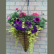 hanging planter basket hanging baskets for plants kinsman garden