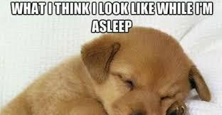 Im Sleepy Meme - czeshop images im sleepy meme