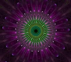 wallpaper bunga lingkaran gambar cahaya abstrak ungu daun bunga kaca warna lingkaran