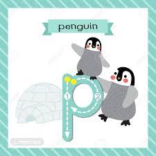 imagenes en ingles con la letra p letra p minúsculos lindos niños colorido zoo y animales abc alfabeto