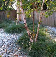 33 best front yard landscaping images on front yards