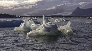tundra tundra biome youtube