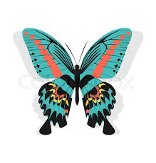 illustration vintage single colorful butterfly isolated on white