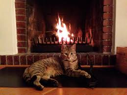 smoking fireplace solutions home design inspirations