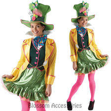 alice in wonderland unbranded costumes for women ebay