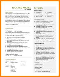 professional resume templates free 11 best cv template dj contract