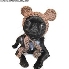 french bulldog star wars costume dog and cat