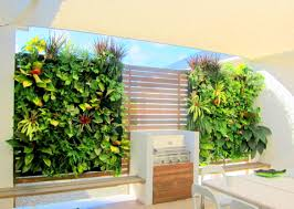 Vertical Garden Walls by Plants On Walls Tropical Oasis