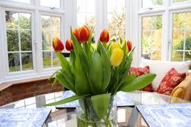 flower pot images widescreen hd wallpapers loversiq spring flowers at home e2 80 93 alexandras london img 7530 pinterest home decor home