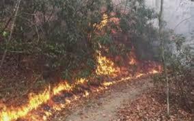 North Bay Fire Ban Status by Wildfire Bigger Than Manhattan Chars North Georgia Mountains Cbs