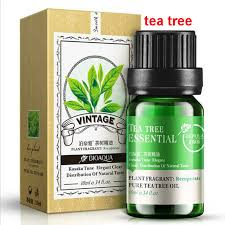 2017 real new the lavender tea tree essential oils compound