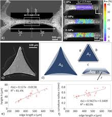 Selve Edge - influence of heat treatments on the microstructure and mechanical