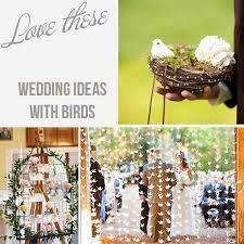 themed wedding ideas bird wedding theme ideas the wedding of my dreams