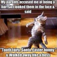 Tooth Fairy Meme - funny meme santa tooth fairy easter bunny liar cat scheduled