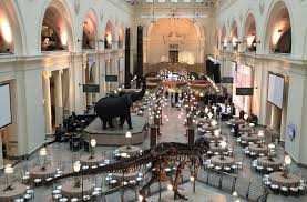 party rentals chicago chicago field museum featured events classic party rentals