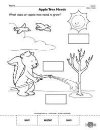 20 best images of kindergarten worksheets living things tree