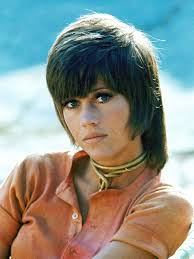 shag haircut 1970s paul mcgregor the shag haircut horace gifford jane fonda klute