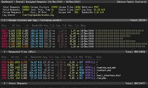 nginx access log analyzer goaccess visual web log analyzer