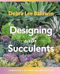 designing with succulents plant talk