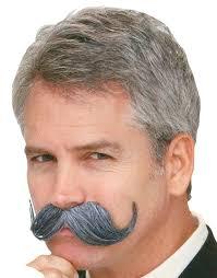 halloween costumes beards handle bar mustache grey halloween costume accessories