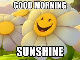 Good Morning Sunshine Meme - good morning sunshine good morning its a beautiful day meme