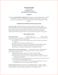 Resume Job Summary by Cv Professional Summary Sample