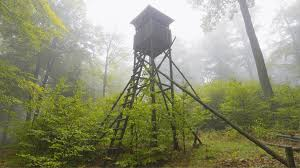 Elevated Bow Hunting Blinds How To Build A Natural Deer Hunting Blind Know Prepare Survive