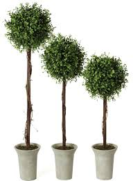 Rosemary Topiary Artificial Potted Plants Sullivans
