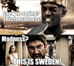 Swedish Meme - this is sweden or at least swedish weather imgflip