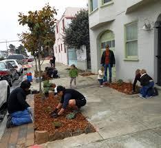 Urban Gardens San Francisco - sidewalk landscaping friends of the urban forest