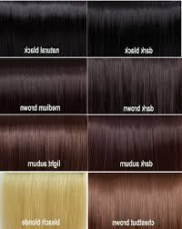 Argan Oil Hair Color Chart Medium Brown Hair With Highlights And Lowlights Medium Hairstyles