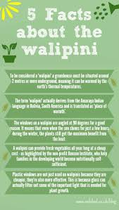 5 walipini underground greenhouse facts permaculture magazine