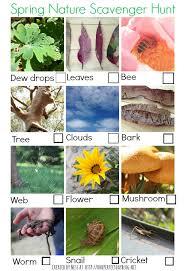 Backyard Scavenger Hunt Ideas Free Printable For A Spring Scavenger Hunt For Kids